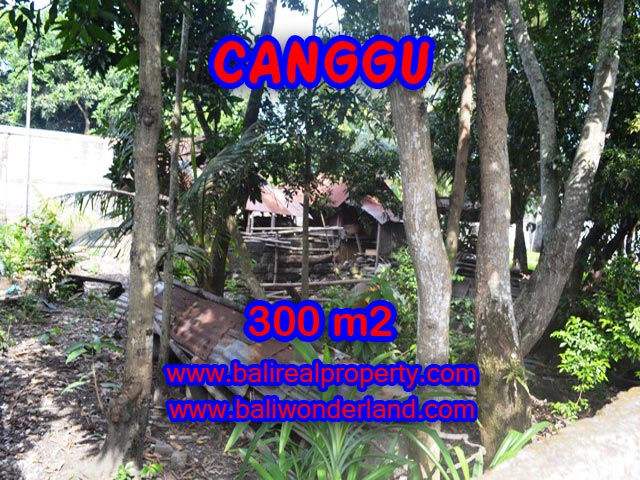 Tanah di Bali dijual 300 m2 di Kerobokan