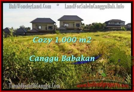 TANAH MURAH DIJUAL di CANGGU 10 Are di Canggu Batu Bolong