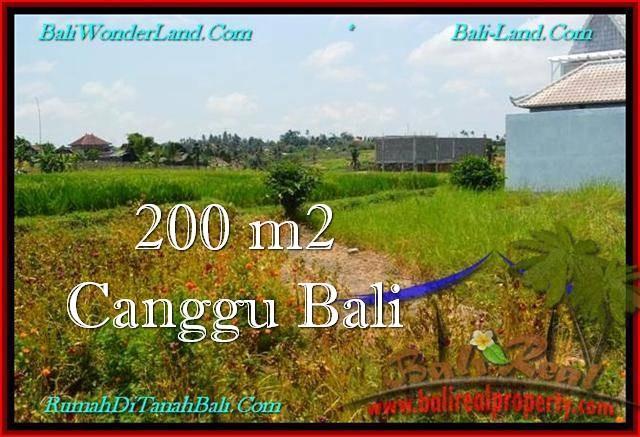 JUAL TANAH di CANGGU 200 m2 di Canggu Pererenan