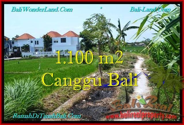 JUAL MURAH TANAH di CANGGU BALI 11 Are di Canggu Brawa
