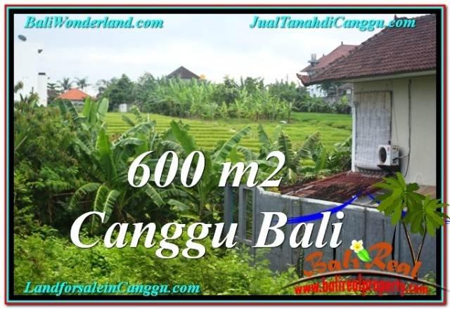 TANAH di CANGGU BALI DIJUAL MURAH 6 Are View sawah lingkungan villa