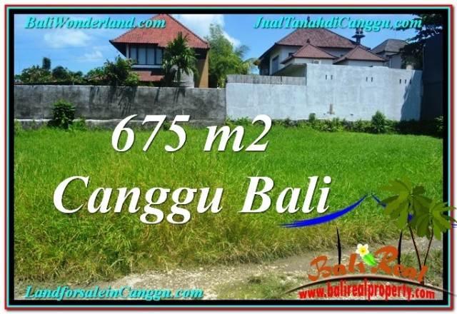 TANAH di CANGGU DIJUAL 6.75 Are di Canggu Brawa