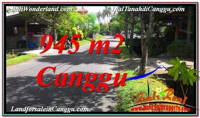 DIJUAL MURAH TANAH di CANGGU Untuk INVESTASI TJCG210