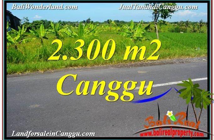 TANAH JUAL MURAH CANGGU BALI 2,300 m2 View sawah,gunung, lingkungan villa