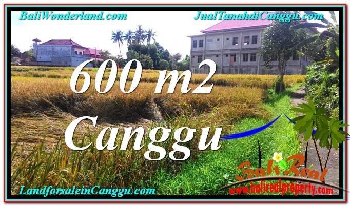 TANAH DIJUAL di CANGGU BALI TJCG211