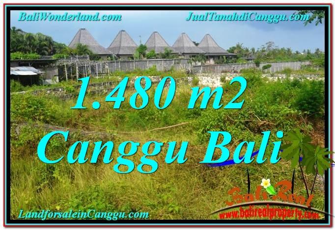 JUAL TANAH di CANGGU 1,480 m2  View sawah lingkungan villa