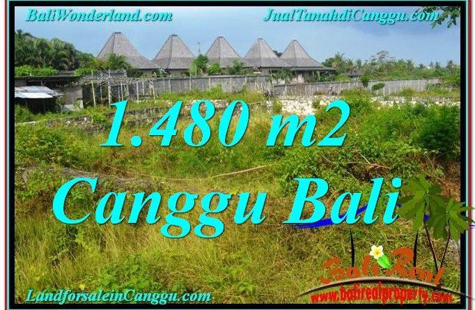 JUAL TANAH MURAH di CANGGU 14.8 Are View sawah lingkungan villa
