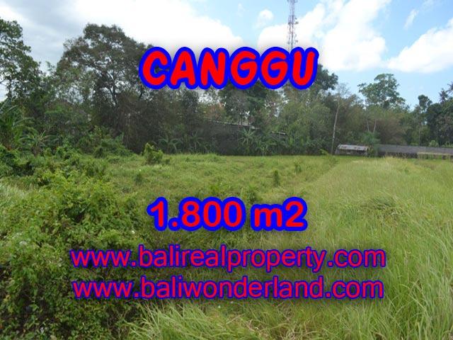 Jual tanah di Canggu Bali 18 Are di Canggu Batu Bolong