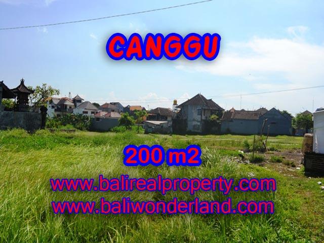 Tanah di Canggu dijual 200 m2 view sawah di Canggu Brawa