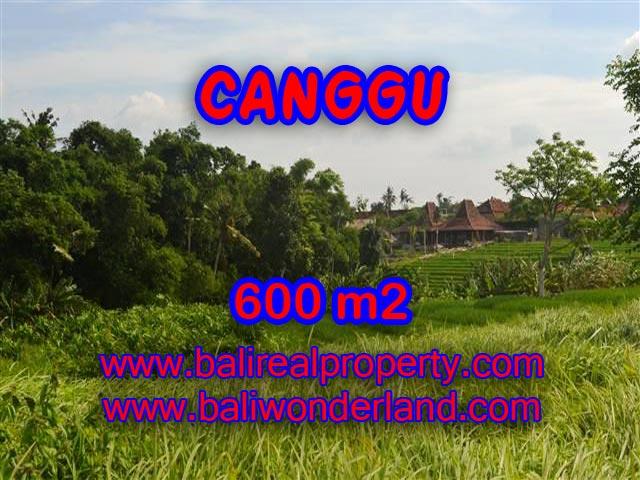 TANAH DI CANGGU BALI DIJUAL CUMA RP 4.250.000 / M2