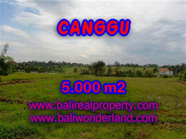 DIJUAL TANAH DI CANGGU BALI TJCG132 - INVESTASI PROPERTY DI BALI