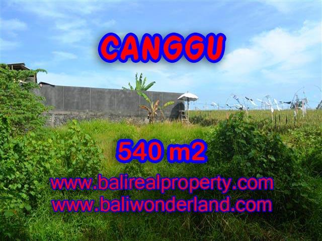 DIJUAL TANAH DI CANGGU BALI CUMA RP 4.350.000 / M2