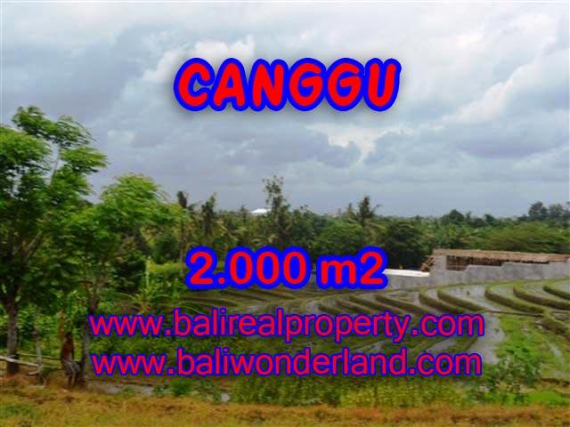 TANAH DI CANGGU MURAH DIJUAL TJCG133 - INVESTASI PROPERTY DI BALI