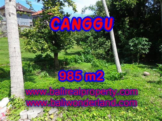 Murah ! Tanah di CANGGU Bali Dijual TJCG147 - investasi property di Bali