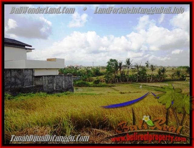 JUAL TANAH MURAH di CANGGU 500 m2 di Canggu Brawa