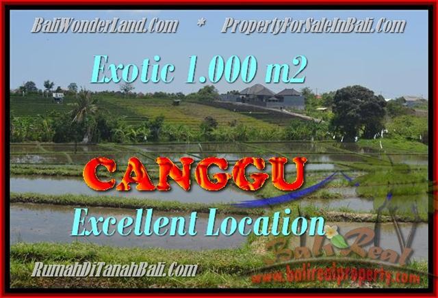 TANAH di CANGGU JUAL MURAH 1.000 m2 View sawah dan laut linkungan villa