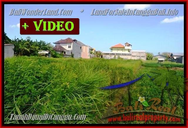 DIJUAL MURAH TANAH di CANGGU BALI Untuk INVESTASI TJCG148