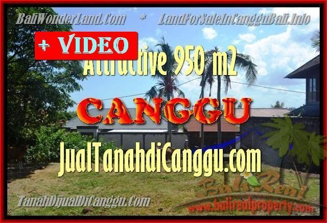 TANAH MURAH DIJUAL di CANGGU 4,5 Are di Canggu Pererenan