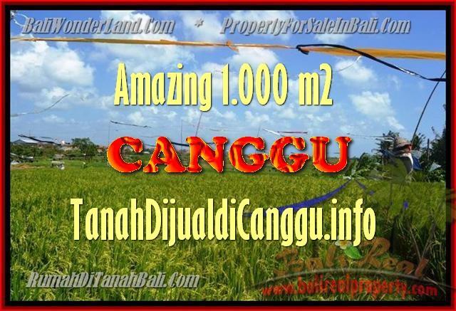 TANAH MURAH DIJUAL di CANGGU BALI Untuk INVESTASI TJCG154