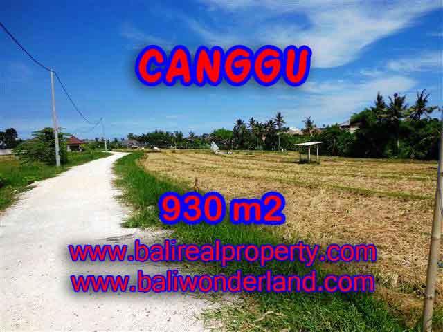 JUAL TANAH MURAH di CANGGU 930 m2 di Canggu Pererenan
