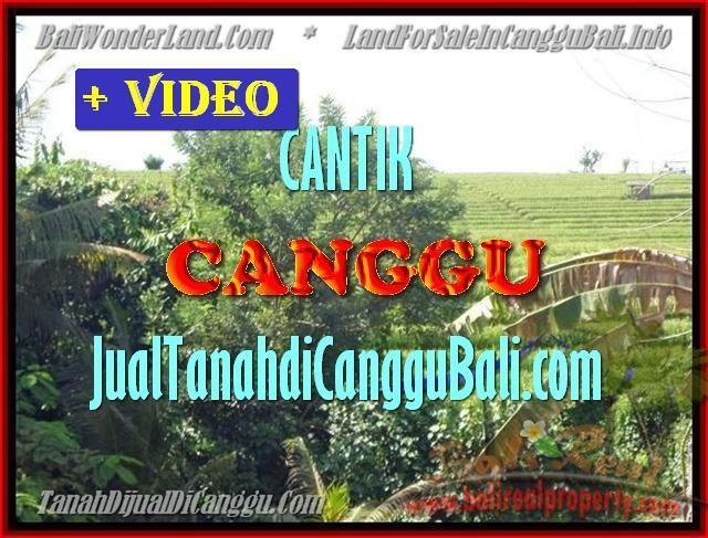 DIJUAL TANAH di CANGGU TJCG143