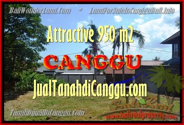 JUAL TANAH di CANGGU BALI 4,5 Are di Canggu Pererenan