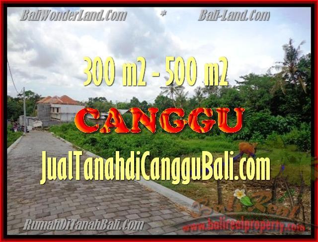 JUAL MURAH TANAH di CANGGU 510 m2 View Sawah