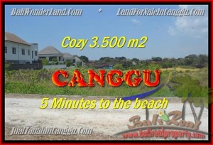 TANAH MURAH di CANGGU BALI DIJUAL 35 Are View sawah lingkungan villa