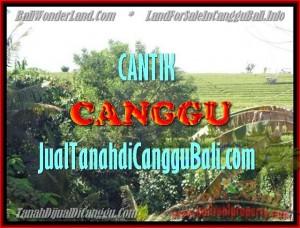 TANAH MURAH JUAL   CANGGU 1.700 m2  View sawah dan sungai