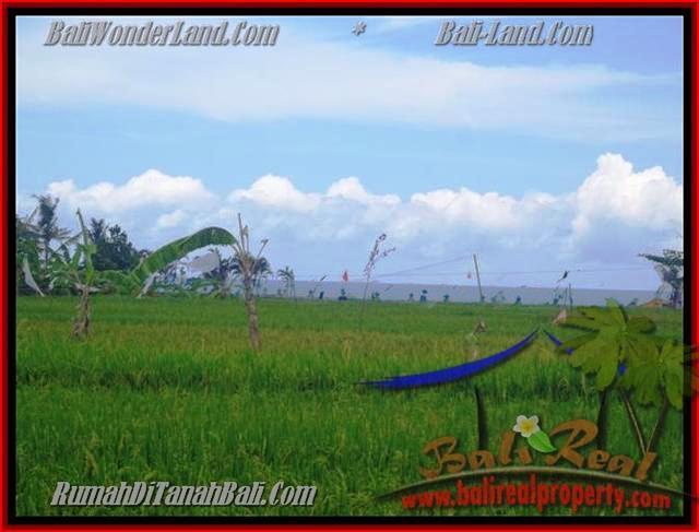 JUAL MURAH TANAH di CANGGU 2.000 m2 view sawah dekat pantai