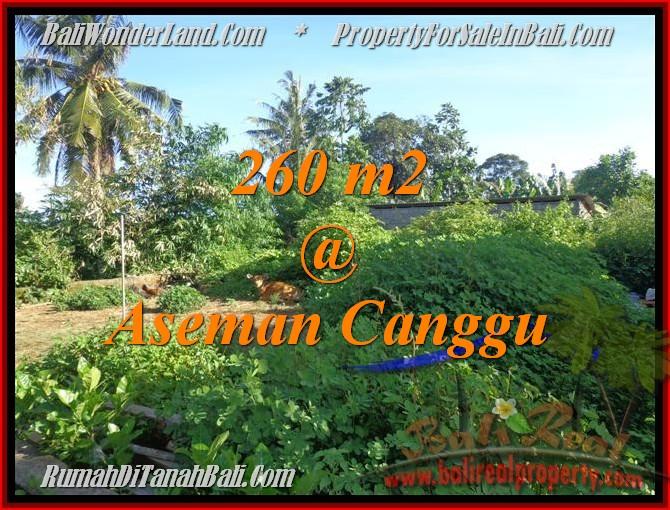 TANAH MURAH di CANGGU BALI DIJUAL Untuk INVESTASI TJCG174