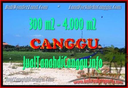 TANAH MURAH di CANGGU JUAL 3 Are View Sawah