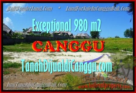 TANAH MURAH di CANGGU JUAL 9,8 Are View Sawah, Sungai dan laut