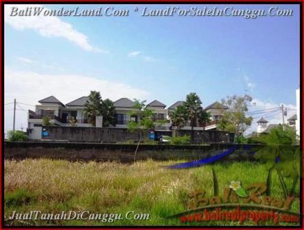 TANAH MURAH DIJUAL di CANGGU 831 m2 di Canggu Batu Bolong