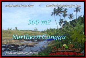 TANAH di CANGGU DIJUAL MURAH 500 m2 di Canggu Pererenan