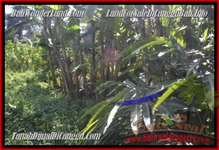 JUAL MURAH TANAH di CANGGU BALI 4.3 Are View sawah dan sungai, gunung link villa