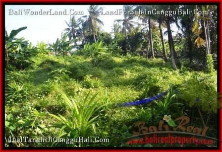 TANAH DIJUAL di CANGGU BALI 10 Are View sawah link villa