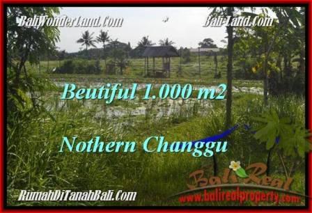 JUAL TANAH di CANGGU 1,000 m2 View laut dan sawah link villa