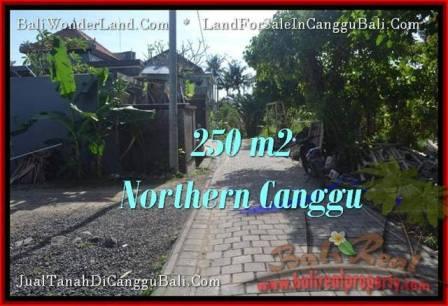 JUAL TANAH di CANGGU 250 m2 View link villa