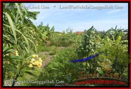 TANAH MURAH di CANGGU JUAL 2.5 Are View link villa