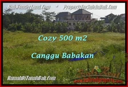 INVESTASI PROPERTI, TANAH DIJUAL di CANGGU BALI TJCG179