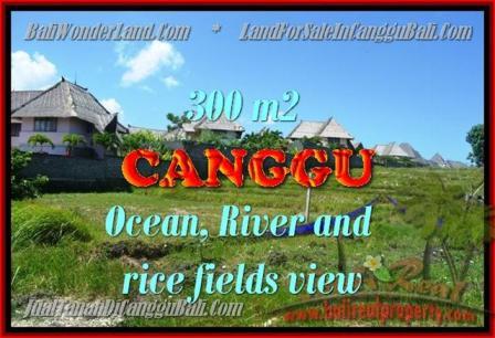 JUAL TANAH di CANGGU 980 m2 di Canggu Pererenan