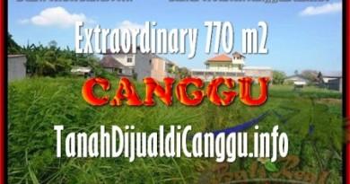JUAL TANAH MURAH di CANGGU BALI 770 m2 View Sawah