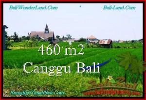 TANAH MURAH DIJUAL di CANGGU 460 m2 di Canggu Brawa