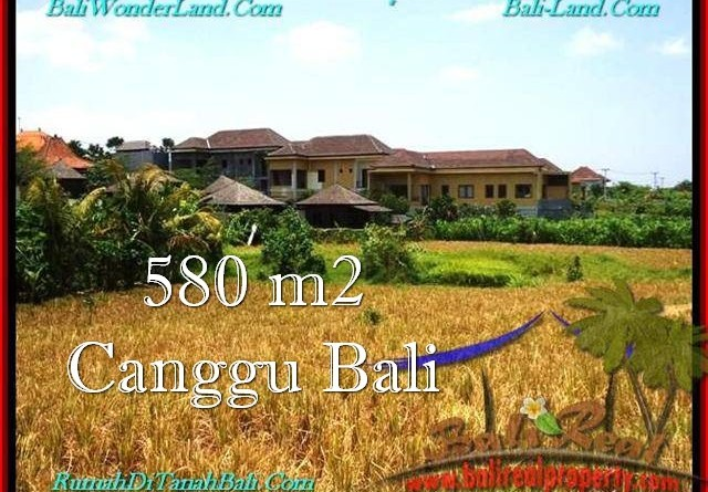JUAL MURAH TANAH di CANGGU BALI 580 m2 View sawah, lingkungan villa
