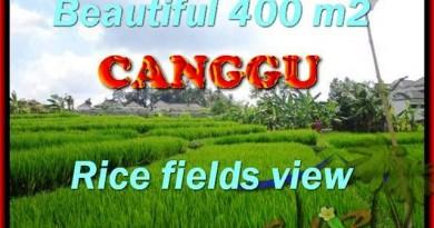 DIJUAL MURAH TANAH di CANGGU TJCG156