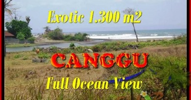 JUAL TANAH di CANGGU 1.300 m2 View sawah dan laut lingkungan villa