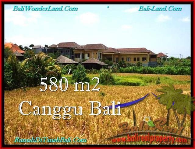 JUAL TANAH MURAH di CANGGU BALI 580 m2  View sawah, lingkungan villa
