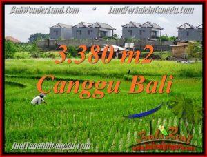 DIJUAL TANAH di CANGGU 33.8 Are di Canggu Echo beach