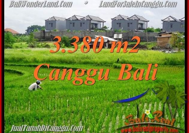 DIJUAL TANAH di CANGGU 33.8 Are di Canggu Echo beach
